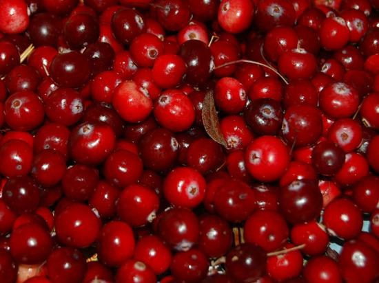 Эта ягода отличается кислым и терпким вкусом, на ее основе часто готовят соусы или варят морсы, но не все знают о ее целебных свойствах