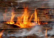 Пожар в Красном Луче унес жизнь мужчины