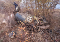 В Волгоградской области в ДТП погибли два человека и один пострадал