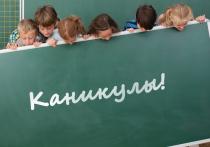 Во время длинных ковид-каникул школьники будут отдыхать, а чиновники — работать