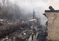 Дети погибших при взрыве работников завода «Разряд» под Рязанью нуждаются в психологической помощи