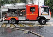 Пожар в доме в Булатниковском проезде в Москве, откуда жильцов пришлось вечером 21 октября эвакуировать сотрудникам МЧС, судя по всему, намеренно устроил жилец трехкомнатной квартиры, заложивший две трети своей жилплощади