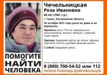 Костромские поисковики из отряда «Лиза Алерт» ищут кареглазую пенсионерку из Галича
