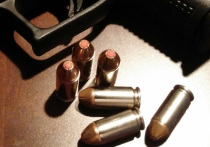 Издание Variety со ссылкой на профсоюз работников индустрии развлечений IATSE Local 44 сообщает, что в пистолете, из которого актер Алек Болдуин во время съемок застрелил оператора и ранил режиссера, был один боевой патрон