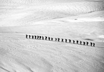 Минимум 11 человек погибли в горах Индии из-за снегопада