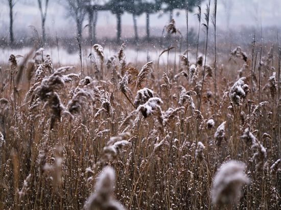 Синоптики предупреждают жителей Удмуртии, что с 25 октября, понедельника, в регион придёт резкое похолодание