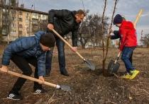 Конец октября в Донецке – традиционное время для общегородских субботников