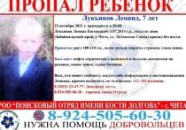 Семилетний ребенок пропал в районе Титовской сопки в Чите  Добровольцы начали распространять информацию об исчезновении семилетнего Леонида Лукьянова в Чите