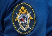 СКР возбудил дело о фальсификации доказательств из-за смерти от ковида медика из Омска