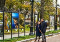 В Москве на Тверском бульваре открылась выставка фоторабот, посвященная улучшению городской среды в столице