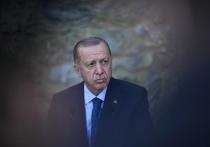 Президент Турции Реджеп Тайип Эрдоган, известный своей импульсивностью и решительными шагами, объявил персонами нон грата послов десяти стран