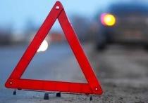 Вечером 24 октября на трасе Чита – Забайкальск в Могойтуйском районе 63-летний водитель внедорожника Nissan X-Trail наехал на животное