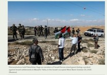 В Израиле будет построено 3000 домов для поселенцев на Западном берегу