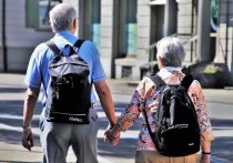 Вероятность отмены пенсионной реформы в России небольшая, как и возвращение прежнего пенсионного возраста, рассказал 25 октября NEWS