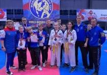 Костромские спортсмены привезли с фестиваля боевых искусств «Кубок Балтийского моря» 13 медалей