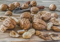 Диетолог Артем Леонов рассказал, что миндаль, грецкие орехи, кешью и фисташки помогают восполнить энергию и нормализовать работу сердечно-сосудистой системы