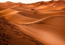 Анализ ДНК помог раскрыть неожиданное происхождение загадочных мумий, похороненных в китайской пустыне
