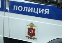 Полицейские отдела полиции в Строгино, избившие несовершеннолетнего Артема Булохова, год назад якобы применяли физическую силу и к его матери