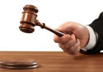 Суд вынес приговор замдиректора детдома в Петербурге за кражу денег у ребенка-инвалида