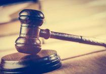 Суд в Петербурге лишил блогера прав за езду по Невскому проспекту в пьяном виде