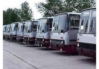 """Водитель автобуса — """"МК"""": """"Вместе с ней была русская женщина и еще трое мужчин"""""""