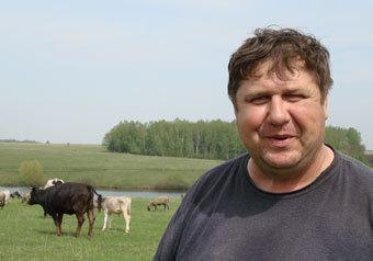 Коров в России не поднять, навозом общим не измерить