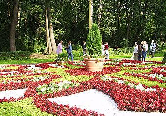 Продлить жизнь цветочным клумбам, ежегодно появляющимся в Кузьминском парке к фестивалю цветников, намерены власти юго-востока столицы