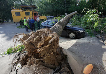 Во время урагана никто не погиб только по счастливой случайности