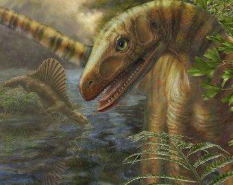 Динозавры на 10 миллионов лет старше, чем считалось