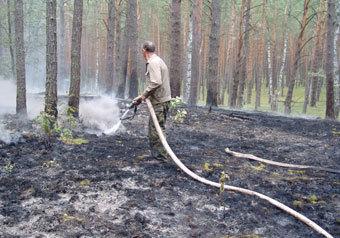 """Приокско-Террасный заповедник стал первым """"горячим"""" адресом в Подмосковье нынешней весной"""