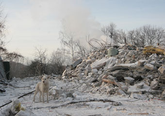 """Юрий Лужков заявил """"МК"""", что элитный поселок также построен незаконно"""