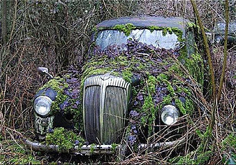 Мы нашли вашавтомобиль!