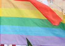 Во Франции противники гей-браков устроили беспорядки