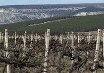 Крымская земля: там есть, что грабить