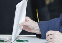 Протестное голосование за... Собянина