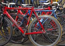 Сенатор Заболотная предложила ставить на учет велосипеды