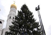 Кремлевской елке оказались нипочем ледяной дождь  и воришки