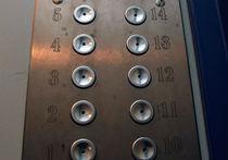 Гастарбайтера осудили на 12 лет за то, что он расстегнул брюки в лифте