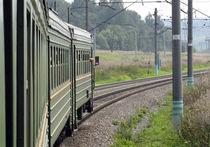 Подмосковный суд приговорил белоруса к 7 годам за попытку изнасилования в электричке