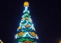 Новый год в Москве пройдет по плану