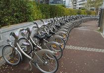 Единая система проката велосипедов будет действовать от Парка Горького до Воробьевых гор