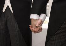 Палата лордов в Великобритании одобрила однополые браки