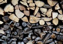 Заповедными деревьями разрешат топить печи