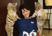 Кто заказал тигров?