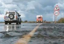 Первая жертва потопа