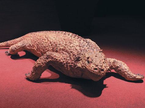 В Кировской области найден самый древний звероящер