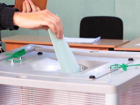 На выборах в Чехии лидируют левые партии и словак-миллиардер