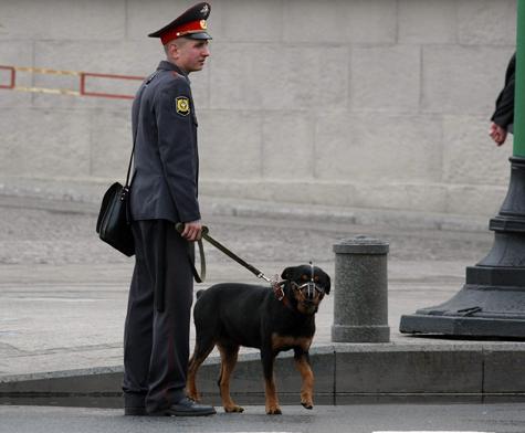 Службу охранников Кремля подсластят повидлом