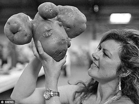 Секс студенты на картошке, список советских и российских групп и певцов
