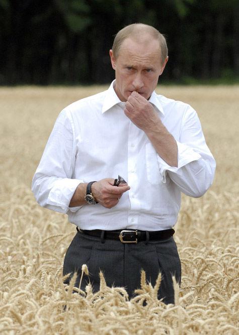 Путина взяли в сельхозоборот